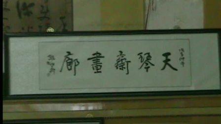 天琴斋画廊视频