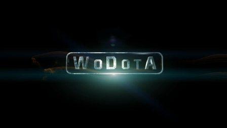 [高清HD][WoDotA荣誉出品] - 藤藤菜个人集锦