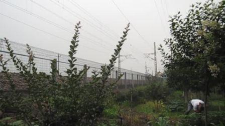 萧甬铁路线(衙前村拍车)一SS4G货列