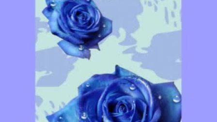 变心的玫瑰