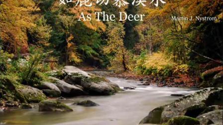 如鹿切慕溪水 As The Deer
