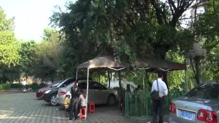 桂林景色美丽如画,有机产品(宝坛香茶)桂林市热卖