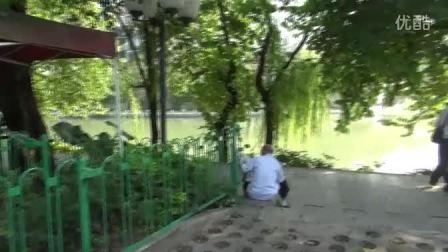 桂林美丽如画,有机产品(宝坛香茶)桂林市热卖