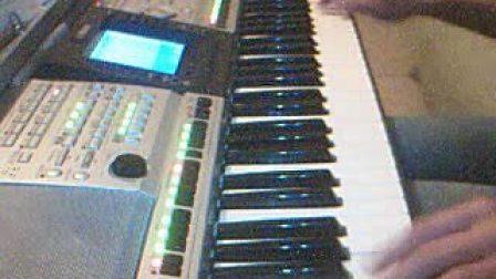 女人花-电子琴
