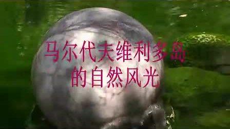 马尔代夫风光浏览www.xasits.com