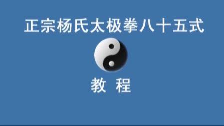 正宗杨式太极拳教学(精讲八)  永年李占英