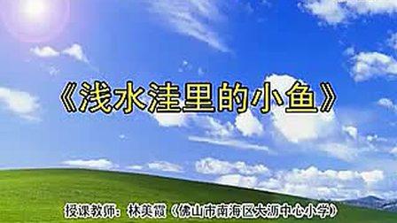 浅水洼里的小鱼 01(佛山市小学语文新课程优质课示范课例)