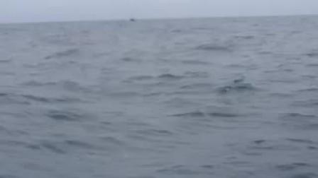 梁文峯的视频 2014-06-24 09:11