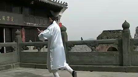 武当太极十三式