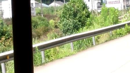 宁波787路公交车报站(2)