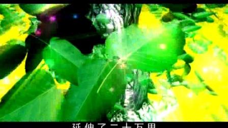 阿弥陀佛的故事3【DVD版】