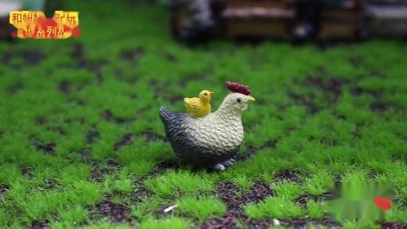 《红果树乐园》第1集 小鸡下蛋