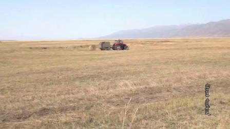 新疆伊犁州昭苏草原哈族牧民的秋收