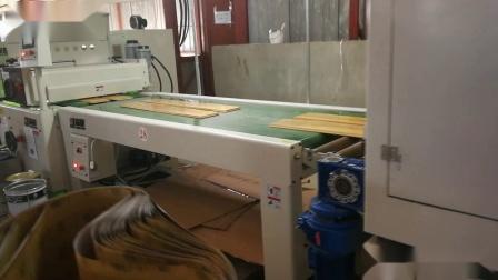 【森联涂装】 滚涂生产线  地板生产线