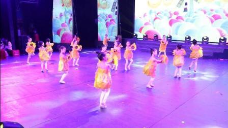 舞蹈-花儿朵朵向太阳