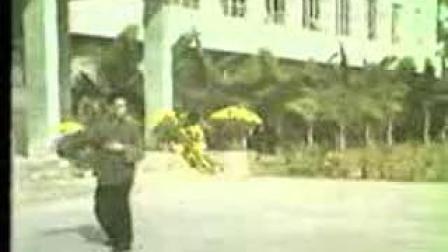 蒋家骏先生一路、二路拳视频(88年)