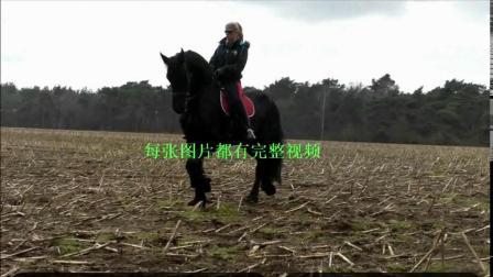 拉丁美女骑马22