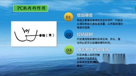 jelp训练视频教程_jelp训练法图解