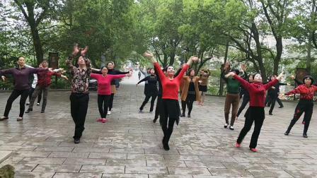 白开水广场舞《红枣树》