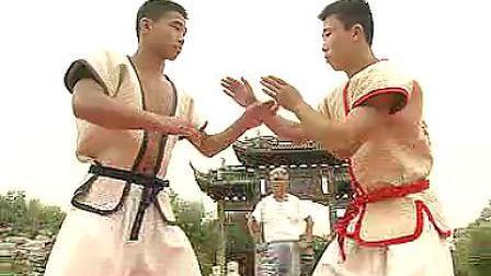 中国式摔跤教程2-王文永