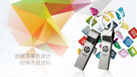 HP v285w  闪存盘