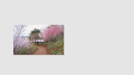吴勇康生日第三集