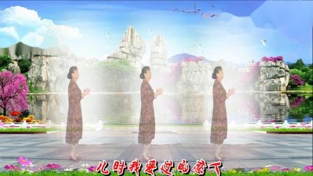 凤之韵 广场舞《红枣树》编舞 惠汝 演示 制作 凤之韵