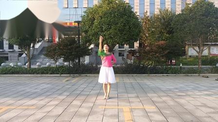 梅子广场舞《红枣树》