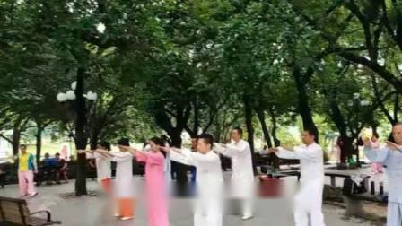 深圳荔枝公园2019.07.24