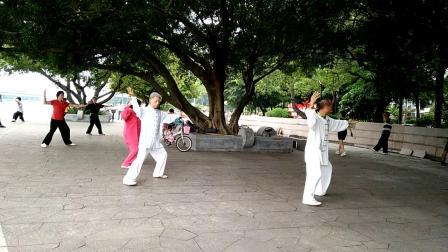 陈永红和学生孔棪林老架一路74表演