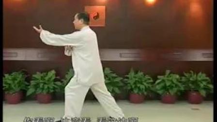 19.传统杨氏太极拳85式讲座73-78(赵幼斌)_标清
