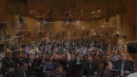 #DabaoSCO - 风雅颂交响曲