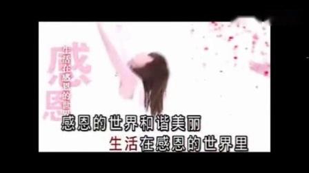 感恩   纯伴奏视频_标清