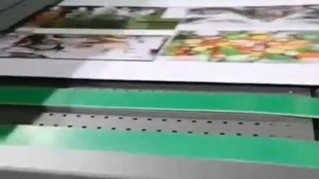 深圳万德 SINGLE PASS UV 彩色高速数码无版印刷 WDUV200系列