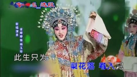 多才多艺的歌手金婷婷(修改稿)