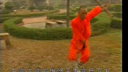少林太祖长拳《释德慈》《中国少林真功夫系列》