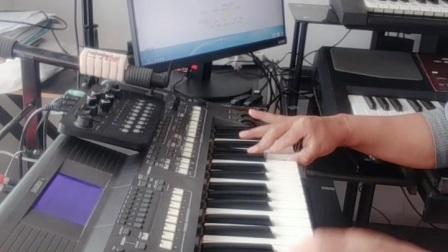 电子琴演奏《家在东北》