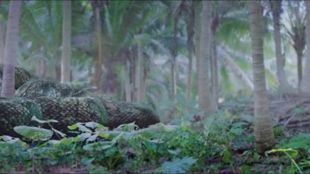 我在大蛇2截取了一段小视频