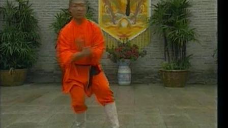 少林通臂拳《释德慈》《中国少林真功夫系列》