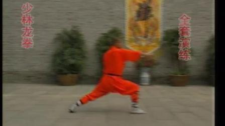 少林龙拳《释德慈》《中国少林真功夫系列》
