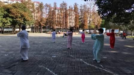 蔡红梅老师一班练四十二式竞赛套路太极拳