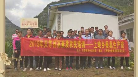 2019年天等县高素质农民培训服务项目集锦