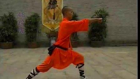 少林护心拳《释德慈》《中国少林真功夫系列》