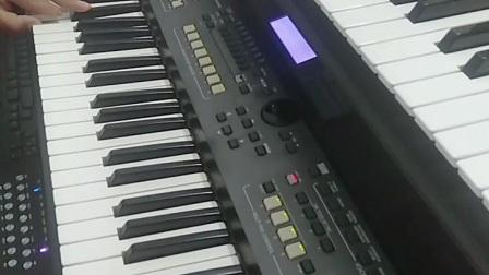 电子琴演奏《红枣树》