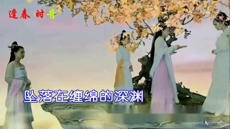 最后的枫叶-陈瑞KTV
