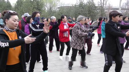 杨氏第五代传人范德治老师精讲八法五步拳课程(1)