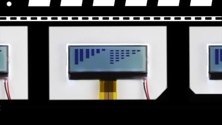 Monochrome LCD Modules / VGG120307-A(BL).mp4