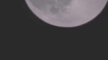 竹笛演奏《十五的月亮代表我的心》