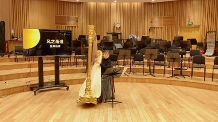 竖琴独奏《哈尔移动城堡》,旋律优美纯净又梦幻 上海爱乐乐团室内乐专场 20200411