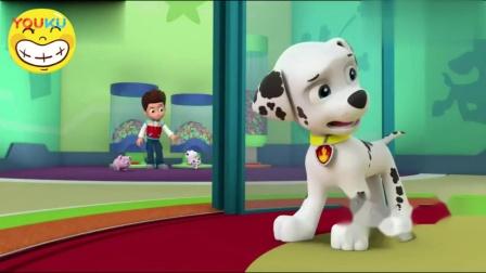 汪汪队立大功 阿奇和小丽看到, 新来小羊玩滑梯, 也想去找莱德玩